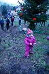 Vánoce u koní